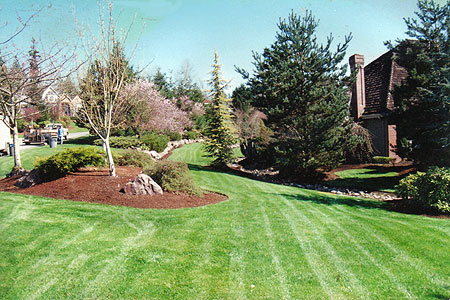 affordable residential commercial landscaping services